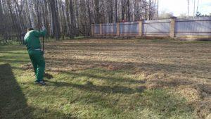 прочесывание газона 2