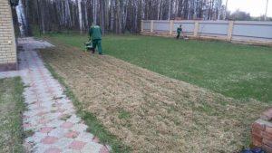 прочесывание газона 3