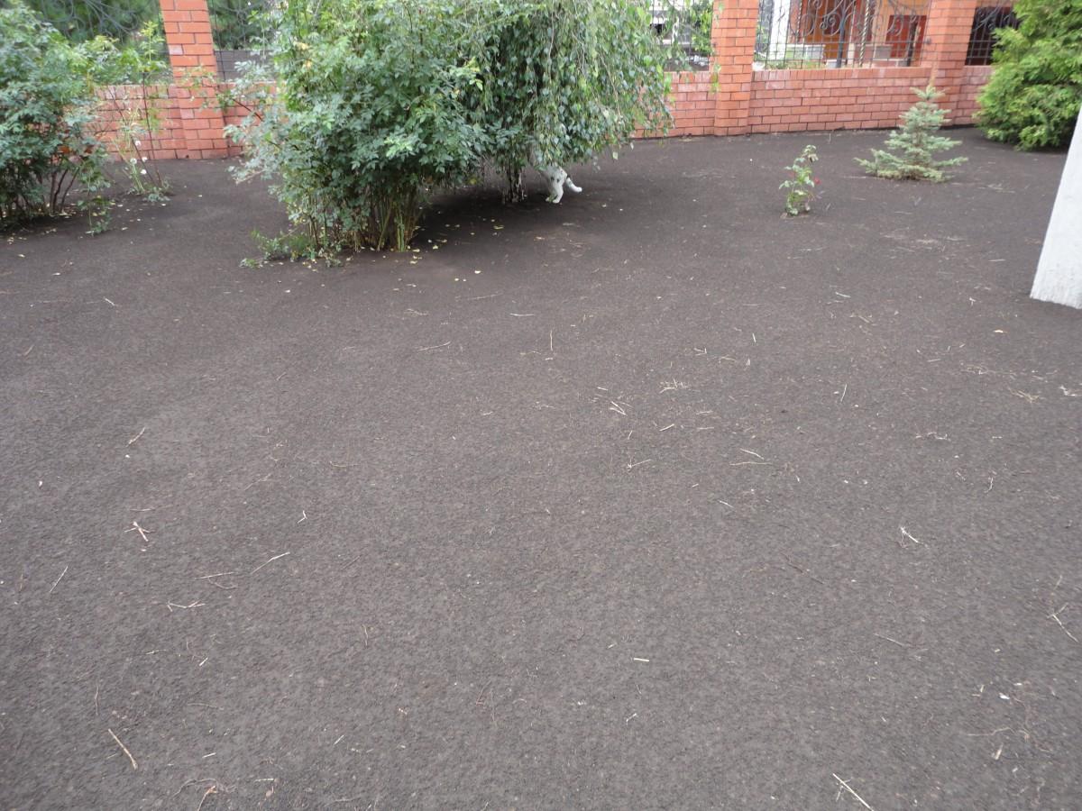 Подготовленный участок под укладку рулоннго газона (7)