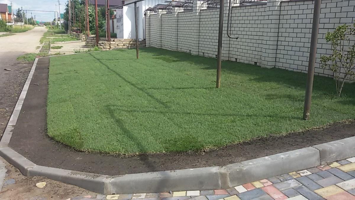 Только что уложенный рулонный газон