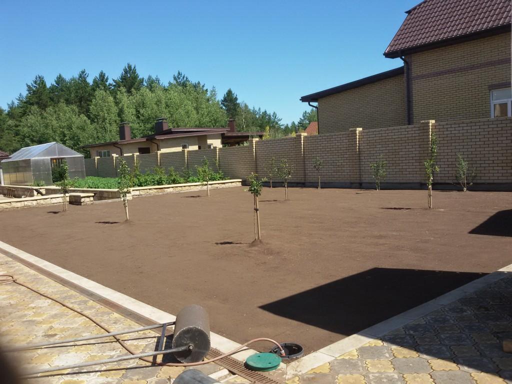Подготовленный участок под укладку рулонного газона (2)