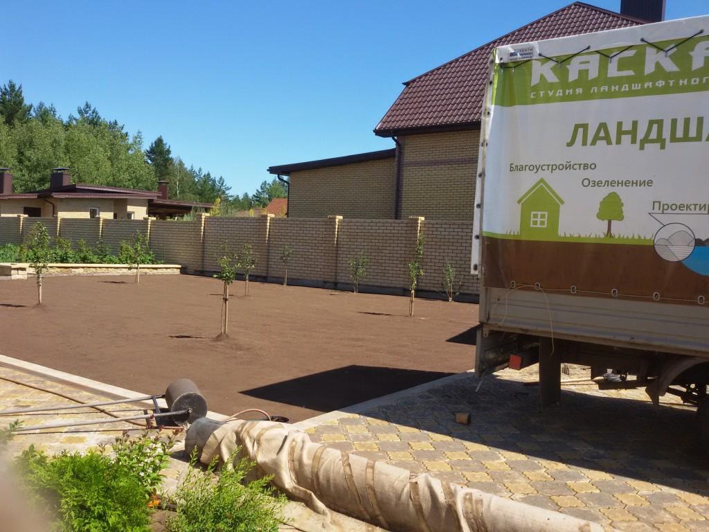 Подготовленный участок под укладку рулонного газона (3)