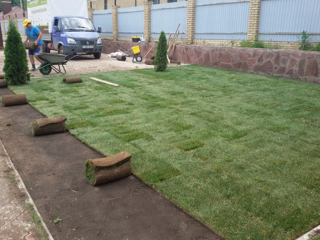 Укладка рулонного газона (2)
